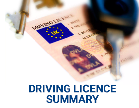 Driving Licence Summary